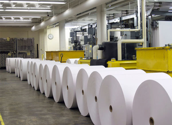 Papermaking up 35% in 10 months yr/yr